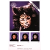 Instruction Shts Cat Animal